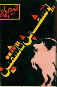 Yousaf bin Tashfin by Naseem Hijazi
