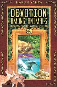 Devotion Among Animals by Harun Yahya