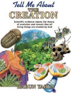 Tell Me About The Creation by Harun Yahya