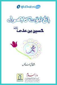 Bagh e Naboowat ka Phool (Hazrat Hussain bin Ali r.a) by Ashfaq Ahmed Khan