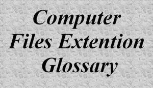 Computer Files Extension Glossary