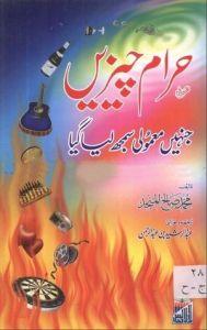 Haram Cheezain Jinhain Mamoli Samjh Liya Gya by Muhammad Saleh Al-Munjid