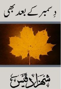 December ke Baad Bhi by Shezada Qais