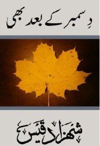 December ke Baad Bhi by Shezada Qais