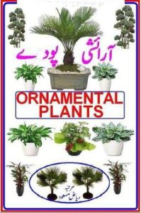 Aaraishi Poday (Ornamental Plants) by Riaz Masood