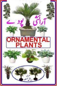 Aaraishi Poday (Ornamental Plants) by Riaz Masood